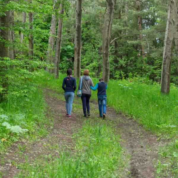 Զբոսանք ծառուղում